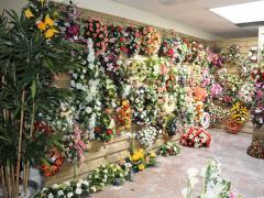 Producent en groothandel van kunstmatige bloemen en planten in de regio Charleroi te koop Provincie Namen n°1