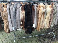 Overname stock te Torhout West-Vlaanderen n°6